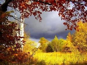 Осень ранняя тихо крадётся