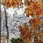 Первый снег в Пятигорске